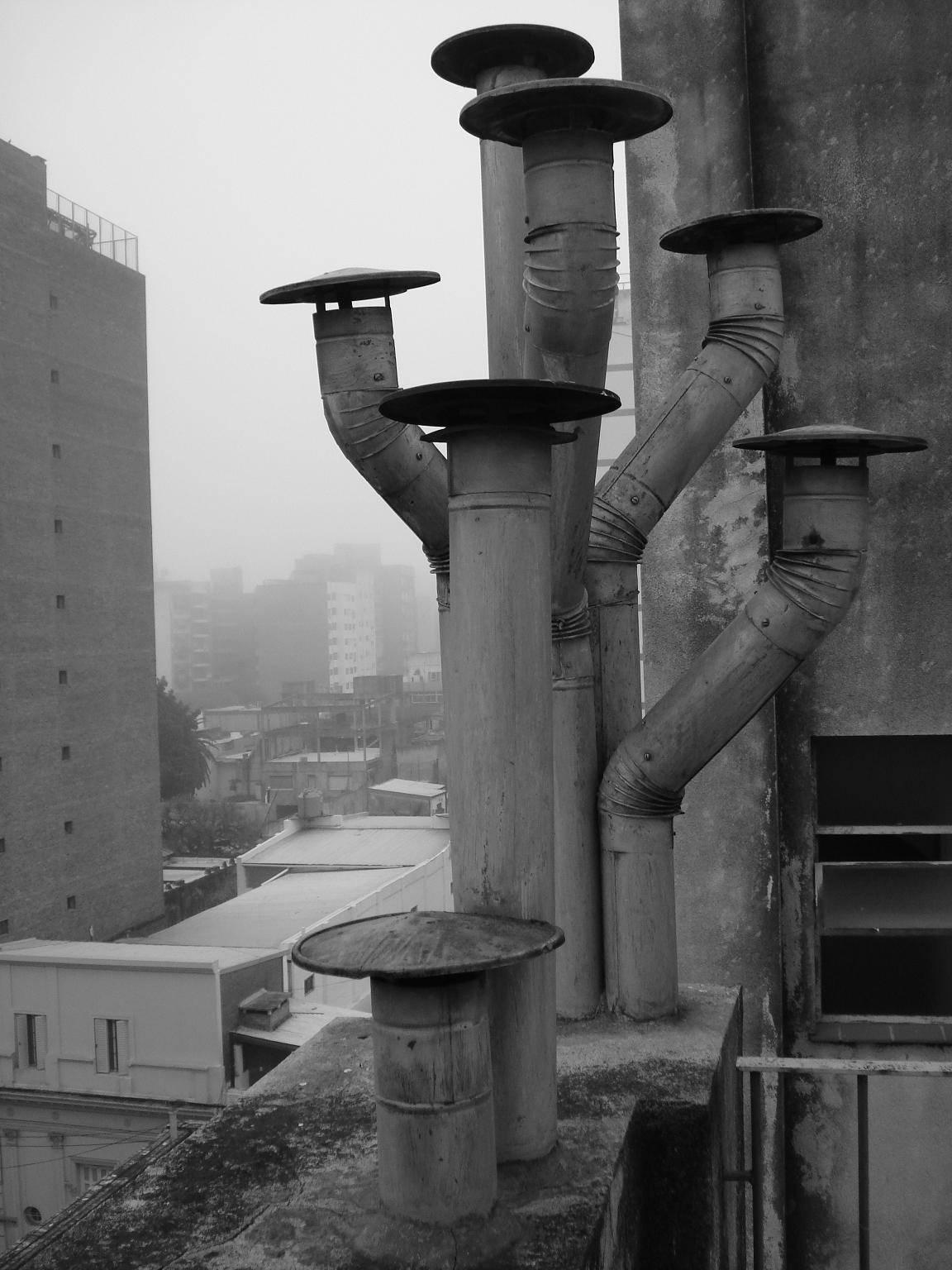 Fotos de Rosario en blanco y negro (fotos propias)