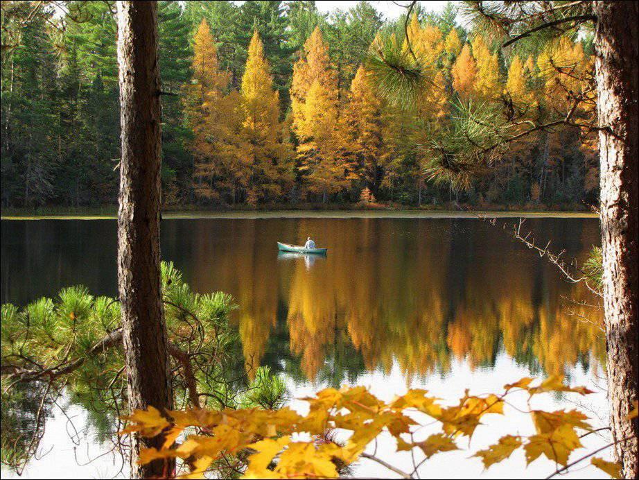 Barwy jesieni #2 12
