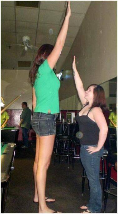 Wysokie kobiety 55
