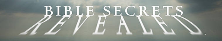 Bible Secrets Revealed S01E04 The Real Jesus 480p HDTV x264-mSD