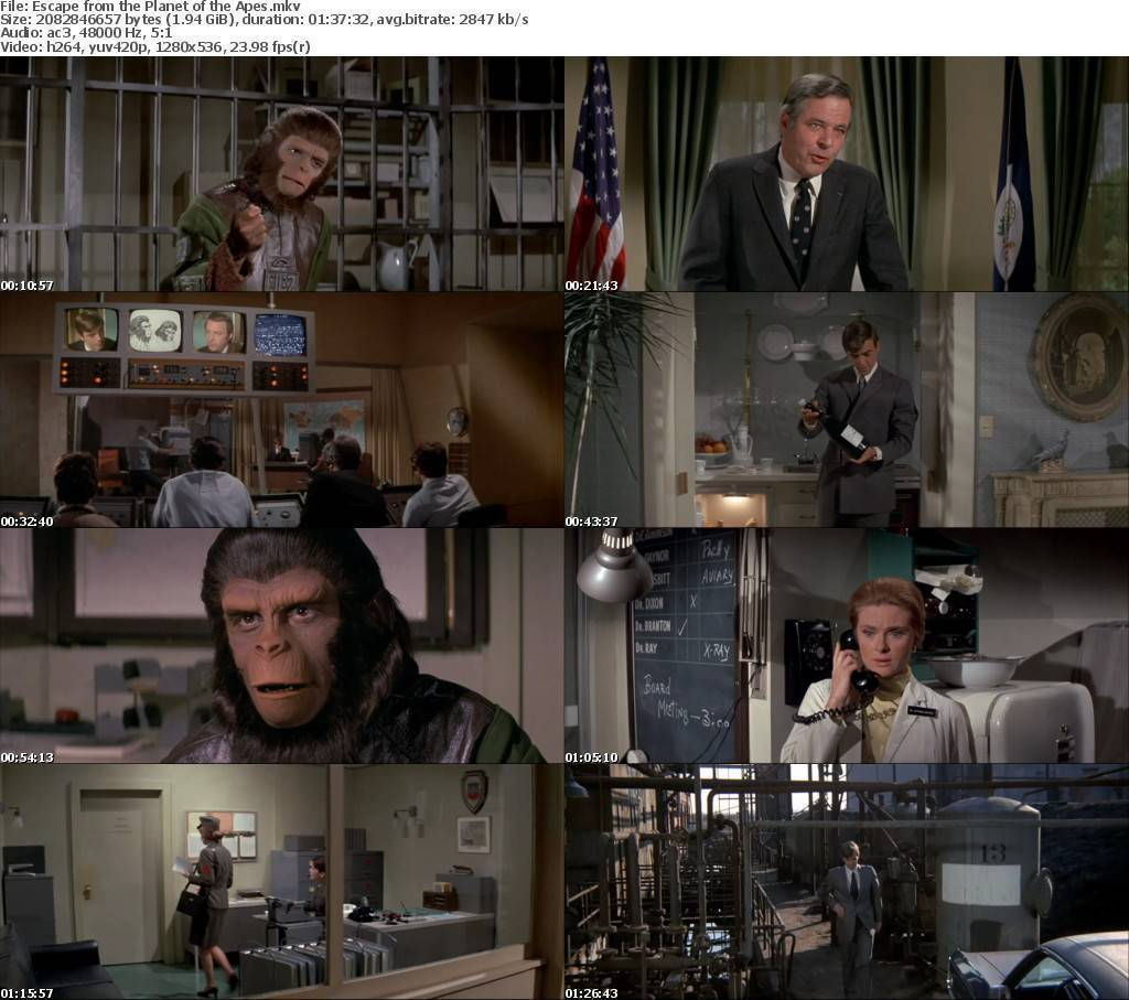 Escape from the Planet of the Apes-(1971)-BRrip -720p-pixie09