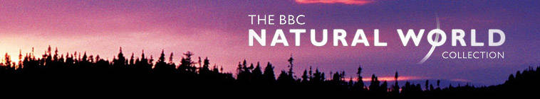 Natural World S34E09 HDTV XviD-AFG