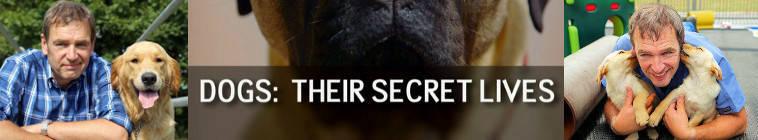 Dogs Their Secret Lives S01E01 HDTV x264-C4TV