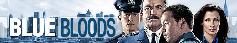 Blue Bloods S05E05 480p HDTV x264-mSD