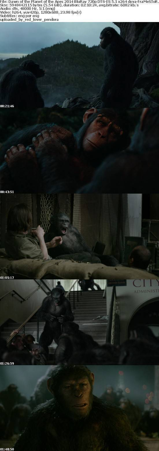 Dawn of the Planet of the Apes 2014 BluRay 720p DTS-ES 5.1 x264 dxva-FraMeSToR