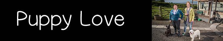 Puppy Love 1x02 480p HDTV x264-mSD
