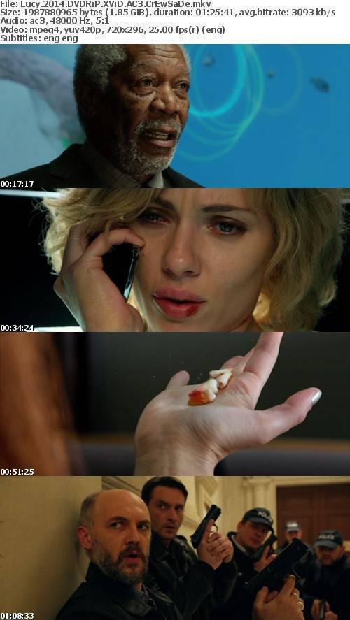 Lucy 2014 DVDRiP XViD AC3 CrEwSaDe