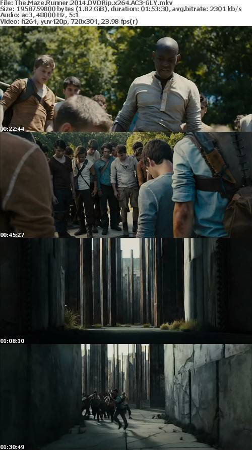 The Maze Runner 2014 DVDRip x264 AC3-GLY