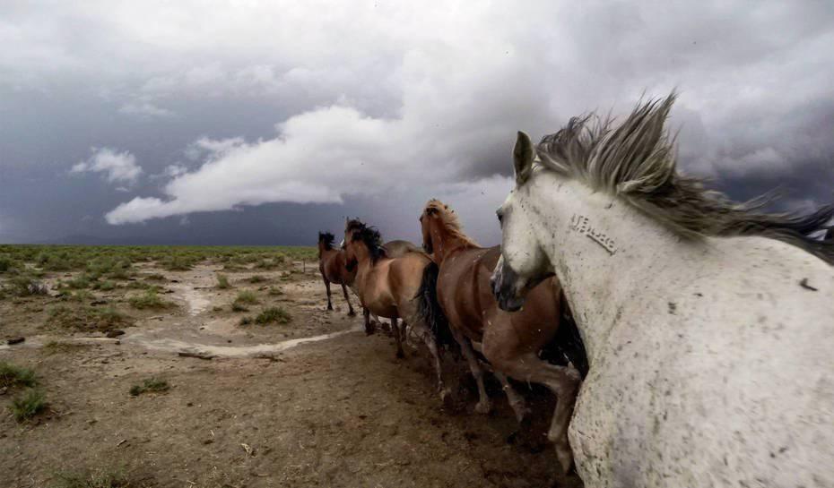 Zdjęcia z GoPro 13