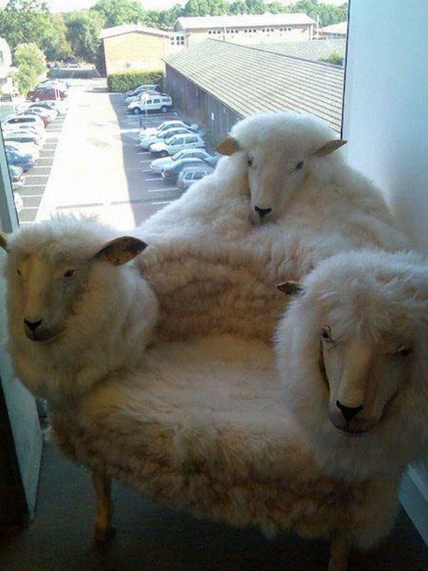 Najdziwniejsze krzesła 44