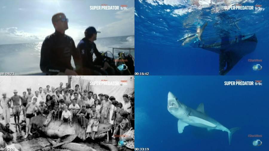 watch shark week 2015 tiburones sharks of cuba   watch tv