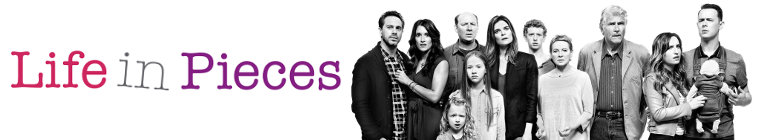 Life in Pieces S01E09 XviD-AFG
