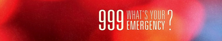 999 Whats Your Emergency S03E11 XviD-AFG