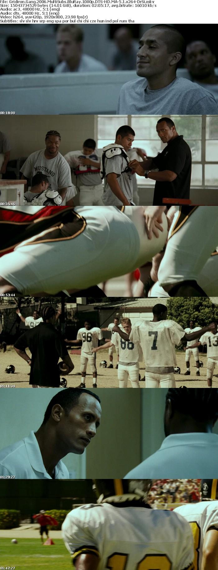 Gridiron Gang 2006 MultiSubs BluRay 1080p DTS-HD MA-5 1 x264-DrSi