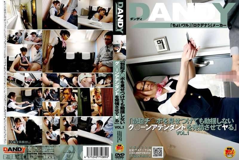 DANDY089 - Cabin Attendant Vol 1