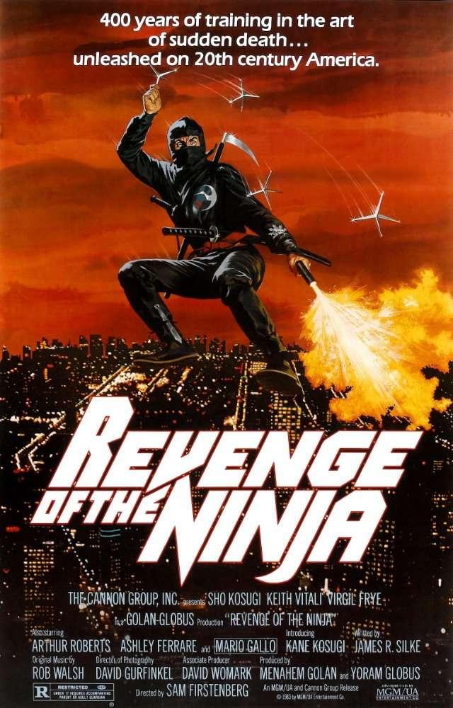 Revenge of the Ninja 2 1983 BRRip XviD MP3