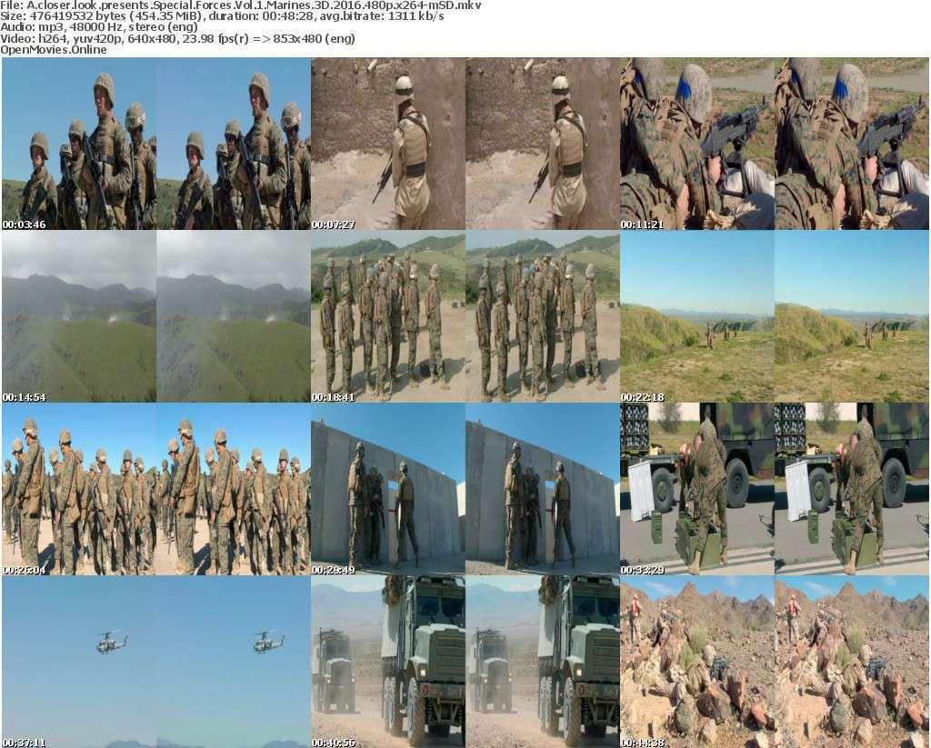 A closer look presents Special Forces Vol 1 Marines 3D 2016 480p x264-mSD