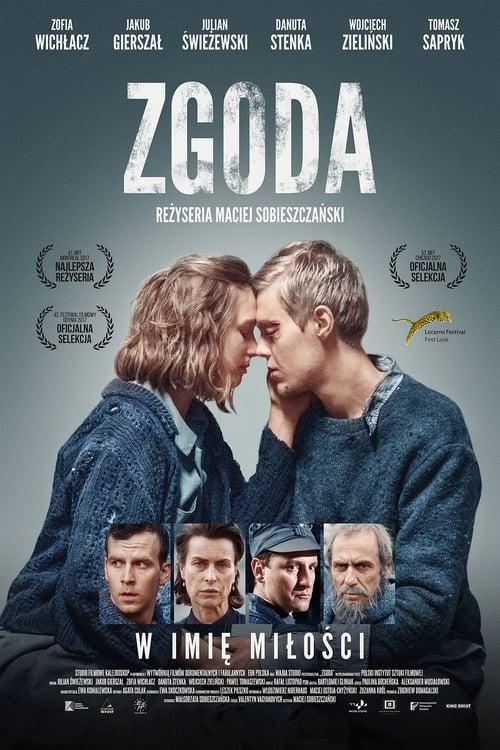 Zgoda 2017 PL PAL DVDR-BFHDVD