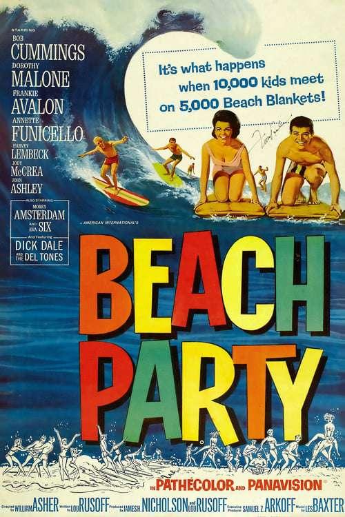 Beach Party 1963 iNTERNAL DVDRip x264-SPRiNTER