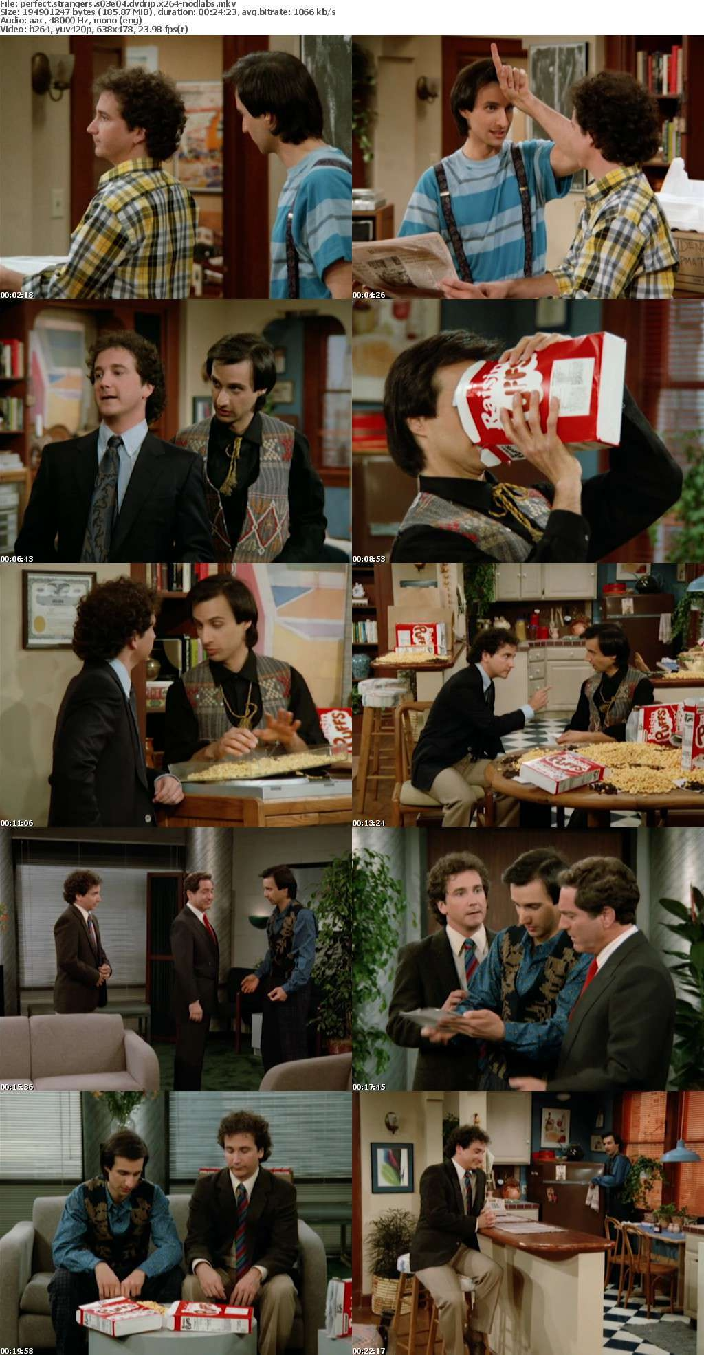 Perfect Strangers S03 DVDRip x264-NODLABS