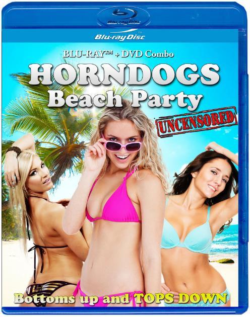 Horndogs Beach Party (2018) HDRip XviD AC3-EVO