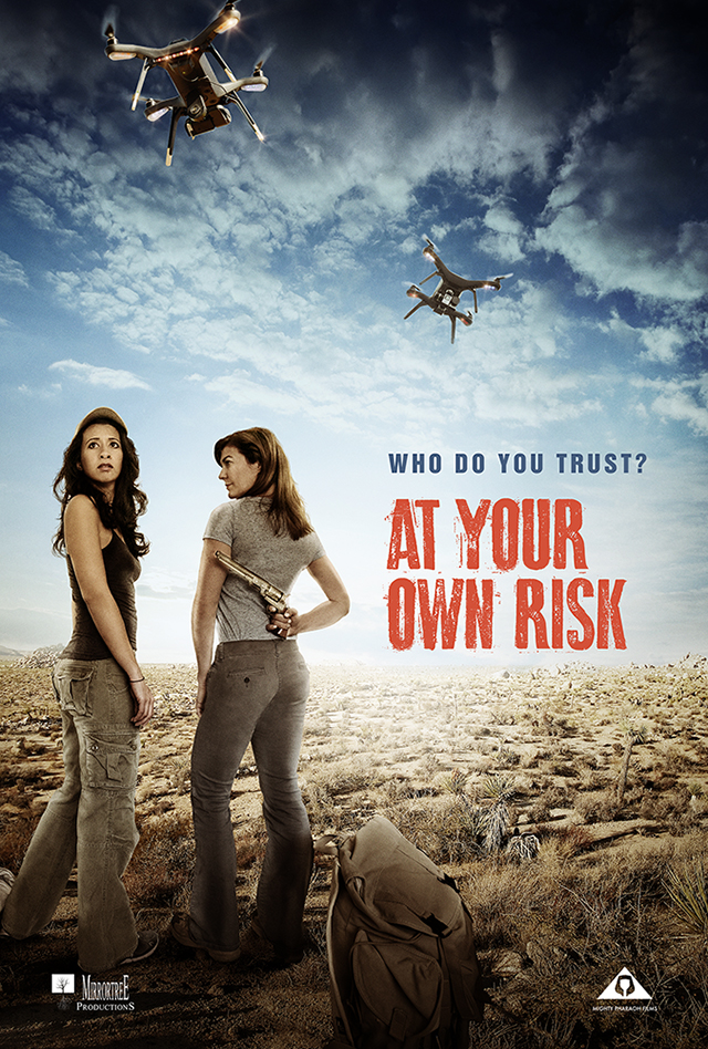 At Your Own Risk (2018) HDRip AC3 X264-CMRG