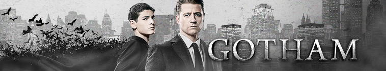 Gotham S04E16 One of My Three Soups 720p WEB-DL DDP5 1 H 264