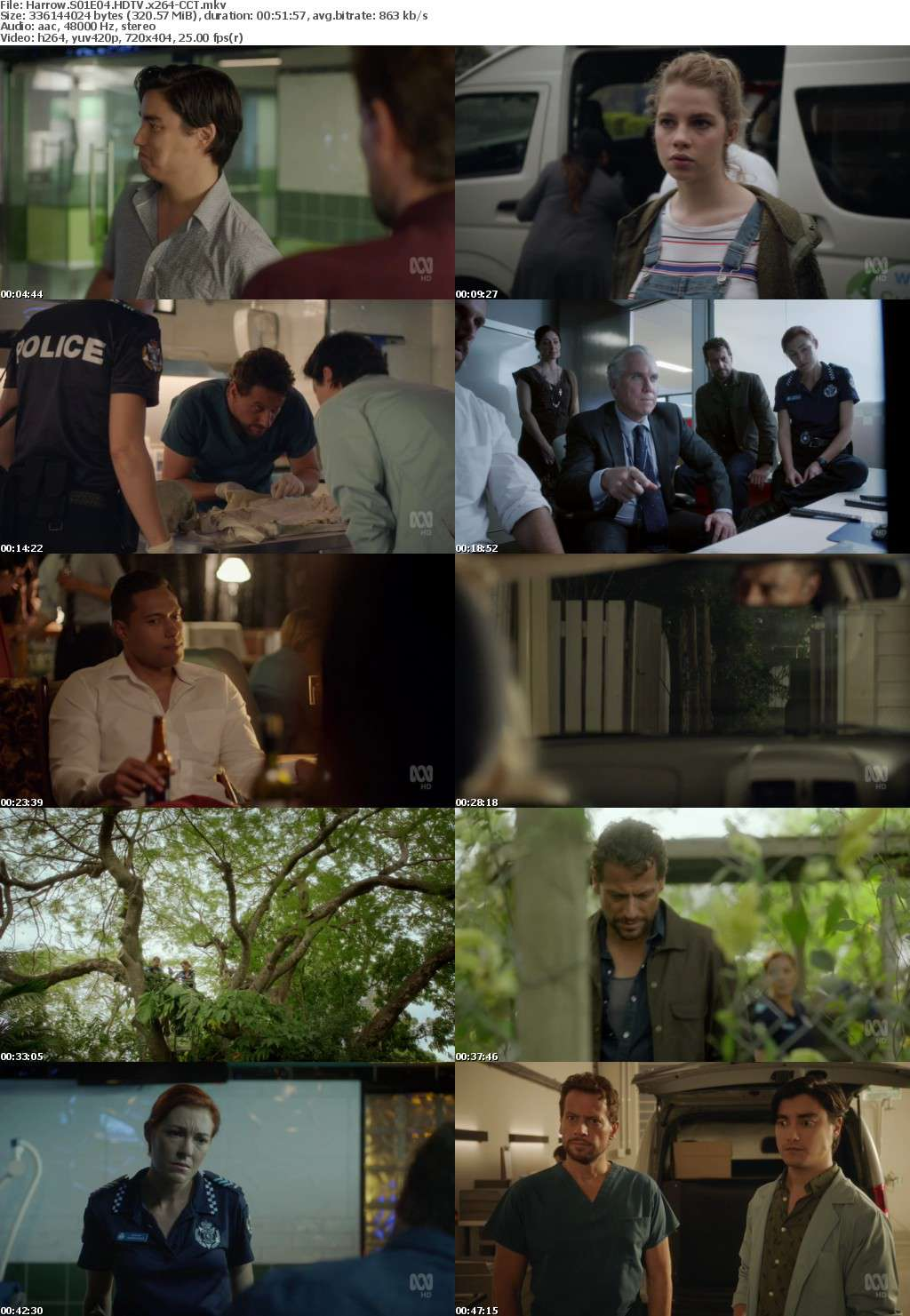 Harrow S01E04 HDTV x264-CCT