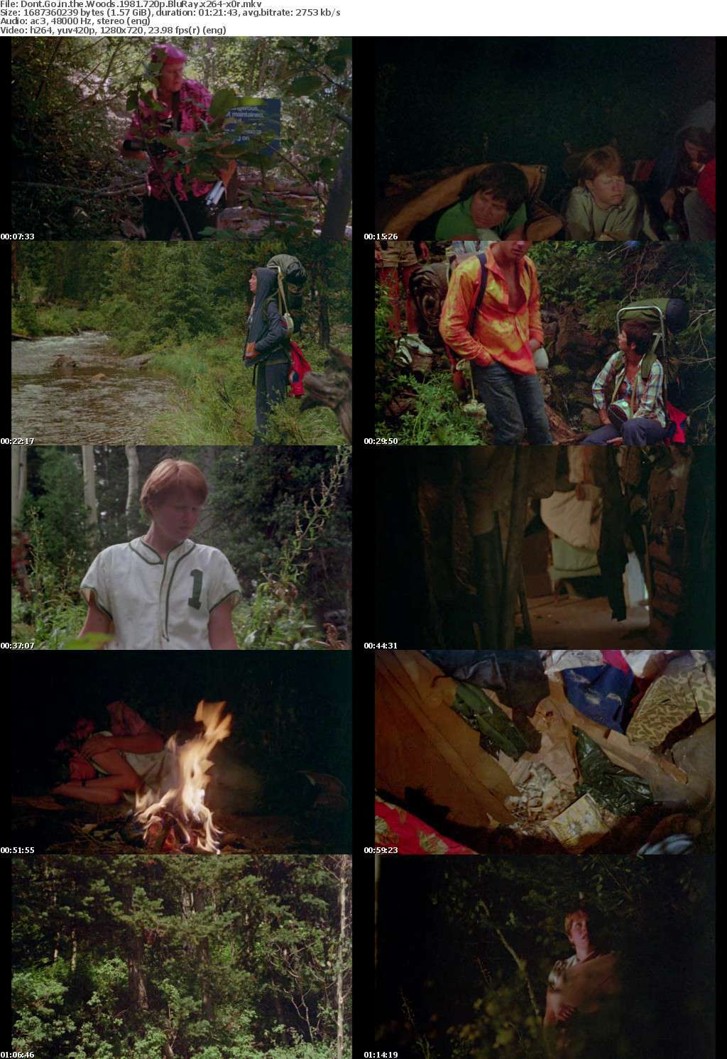 Dont Go in the Woods 1981 720p BluRay x264-x0r