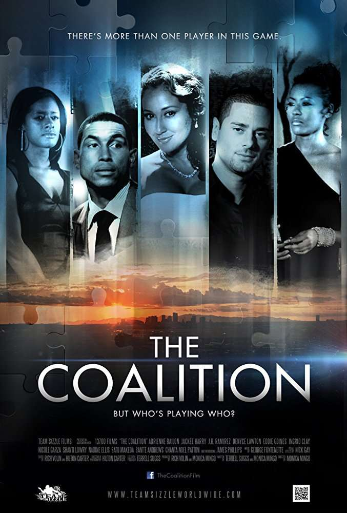 The Coalition 2013 1080p BluRay H264 AAC-RARBG