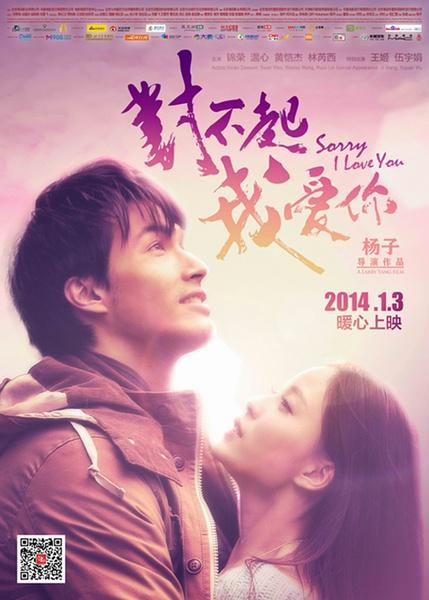 Sorry I Love You 2013 CHINESE 720p AMZN WEBRip DDP2 0 x264-NTG