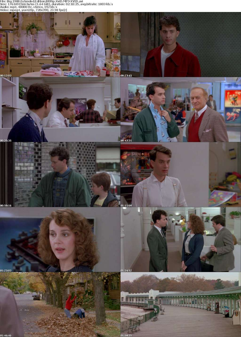 Big 1988 Extended Edition BRRip XviD MP3-XVID