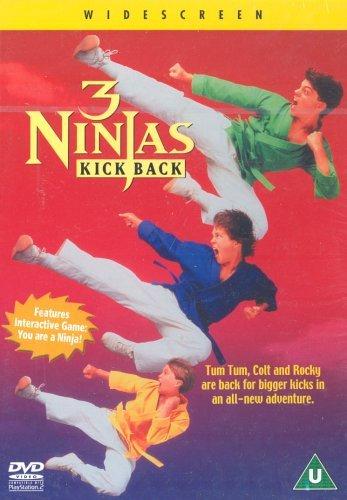 3 Ninjas Kick Back 1994 WEBRip x264-ION10