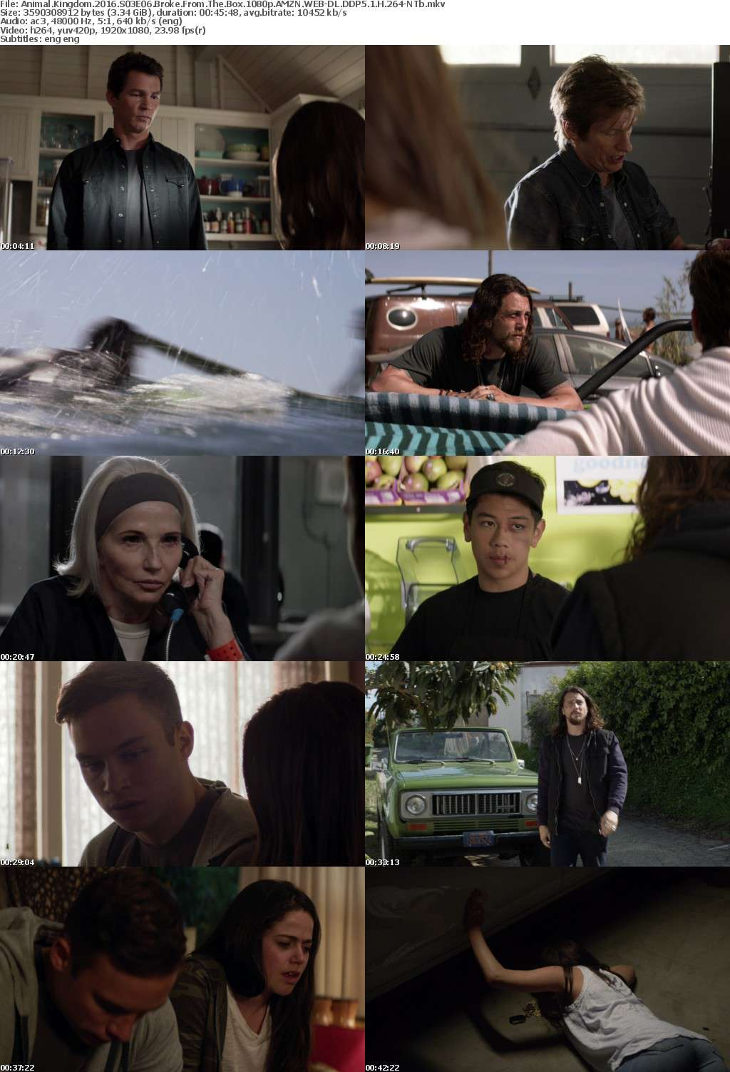 Animal Kingdom 2016 S03E06 Broke From The Box 1080p AMZN WEB-DL DDP5 1 H 264-NTb