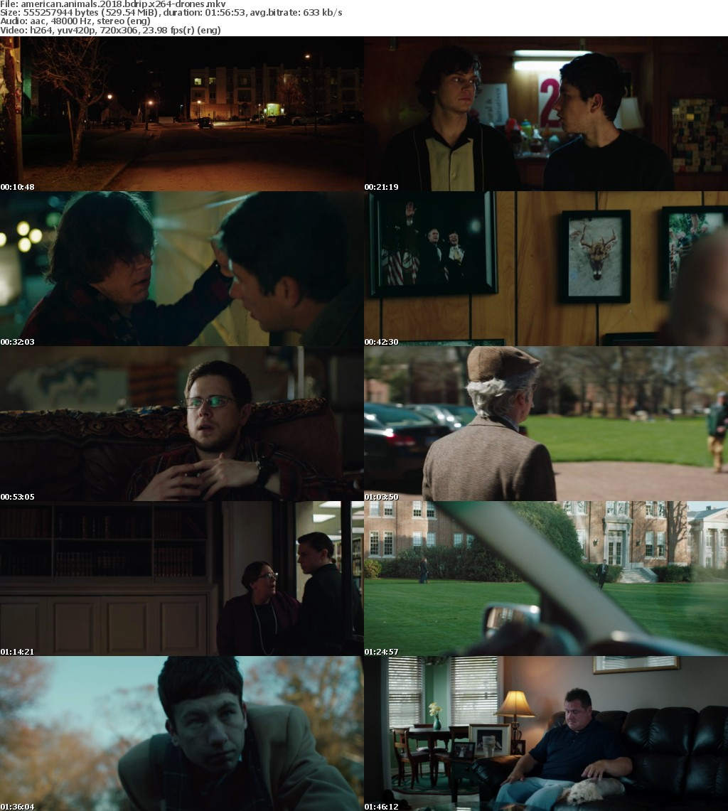 American Animals 2018 BDRip x264-DRONES