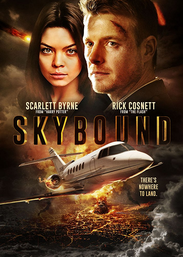 Skybound (2017) BDRip x264-LATENCY