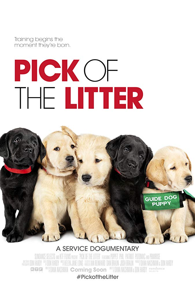 Pick of the Litter 2018 DOCU 720p WEB-DL XviD AC3-FGT