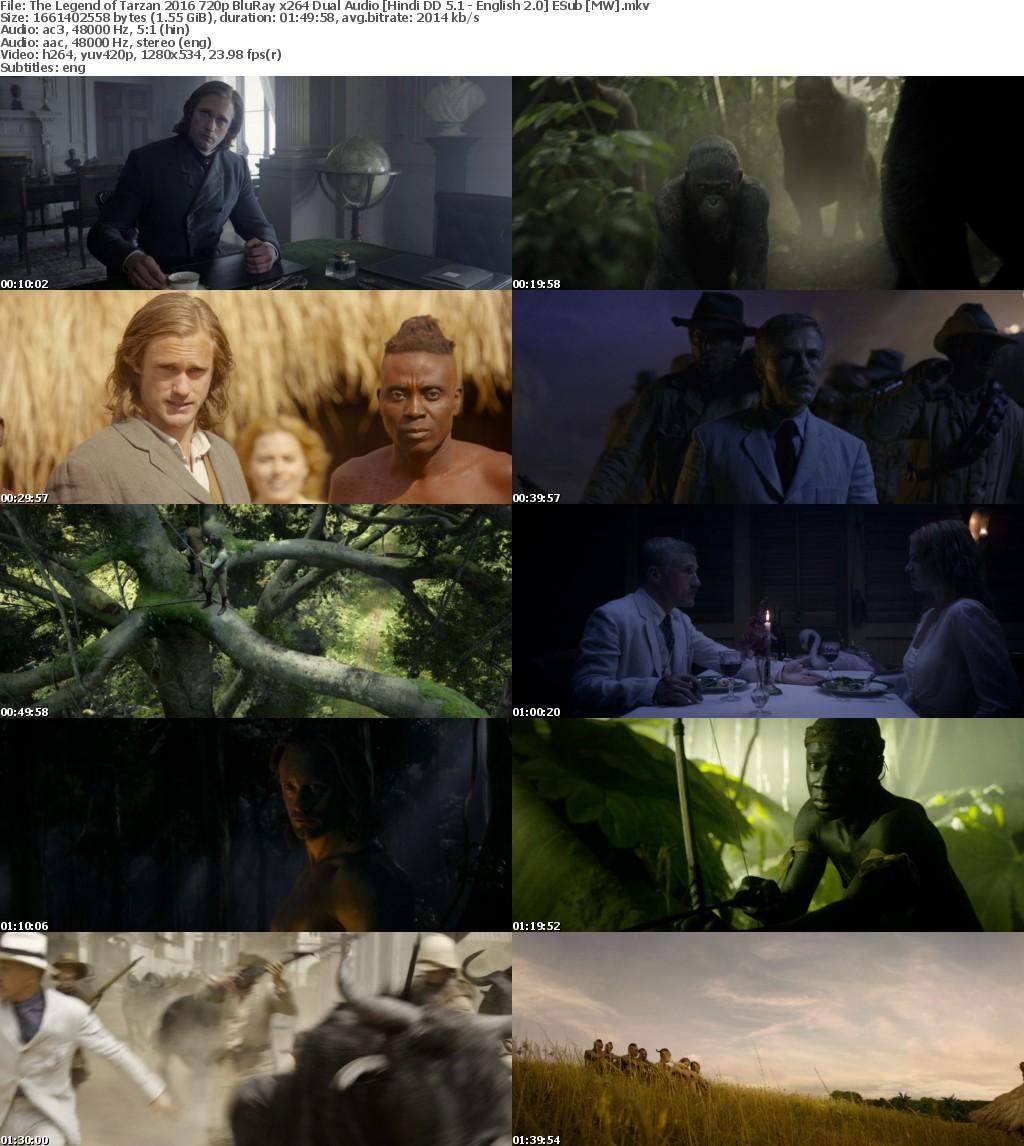The Legend of Tarzan (2016) 720p BluRay x264 Dual Audio Hindi DD 5.1-English 2.0 ESub MW