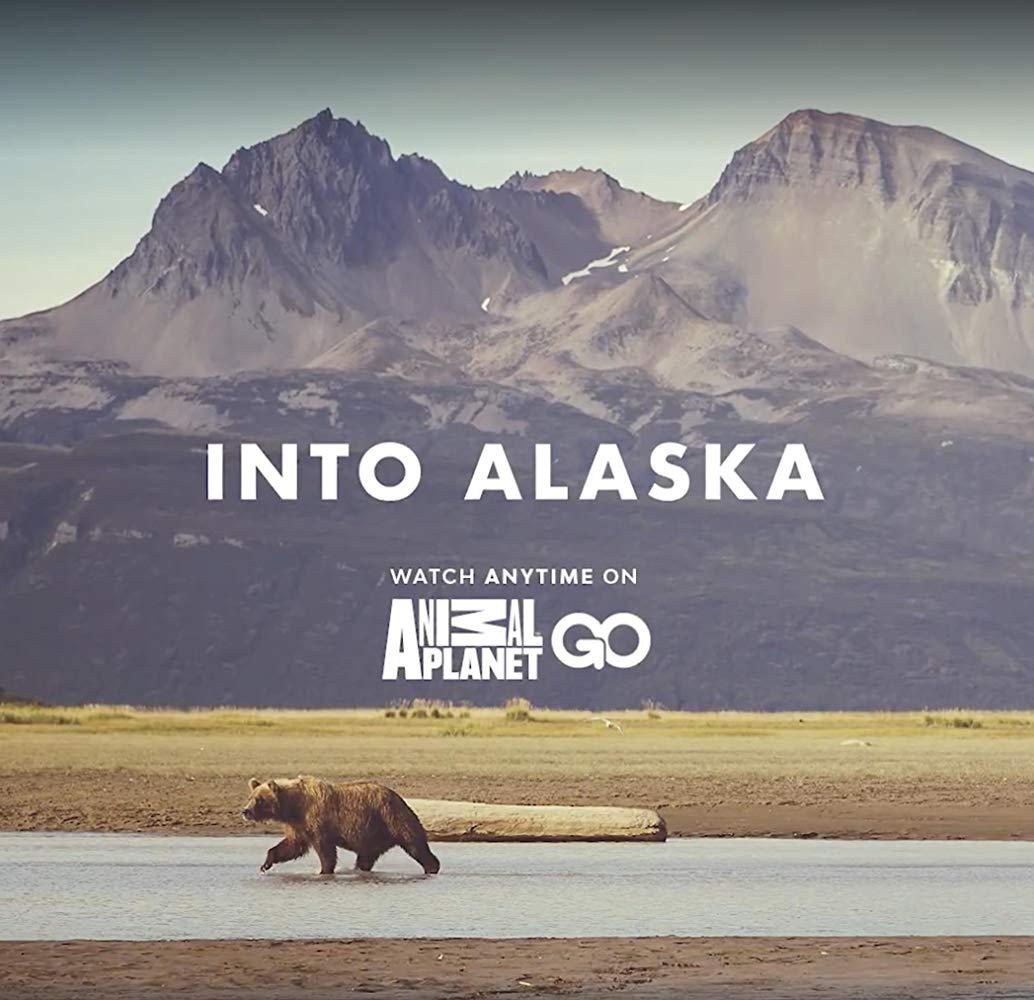 Into Alaska S01E02 The Heart of Bear Country 720p WEBRip x264-CAFFEiNE