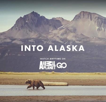 Into Alaska S01E10 End of Summer 720p WEBRip x264-CAFFEiNE