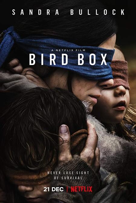 Bird Box 2018 HDRip XviD AC3-EVO