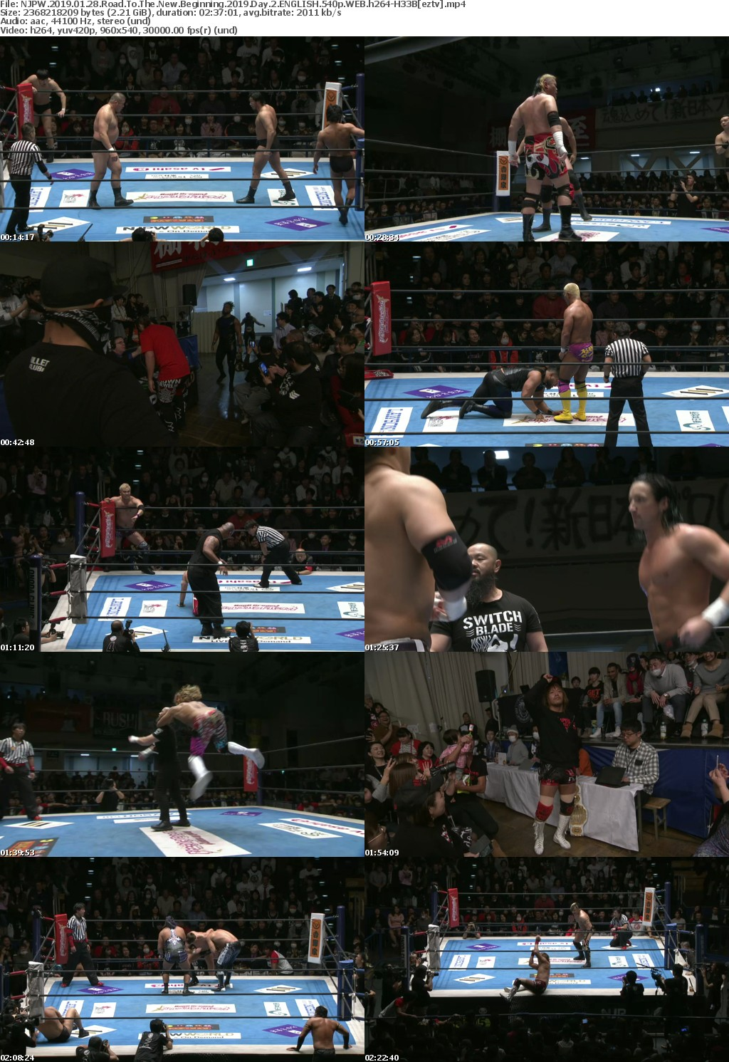 NJPW (2019) 01 28 Road To The New Beginning (2019) Day 2 ENGLISH 540p WEB h264-H33B