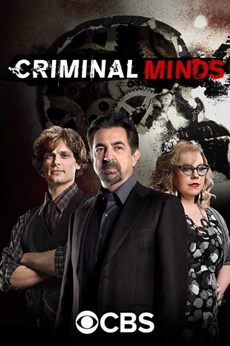 Criminal Minds S14E15 720p HDTV x265-MiNX