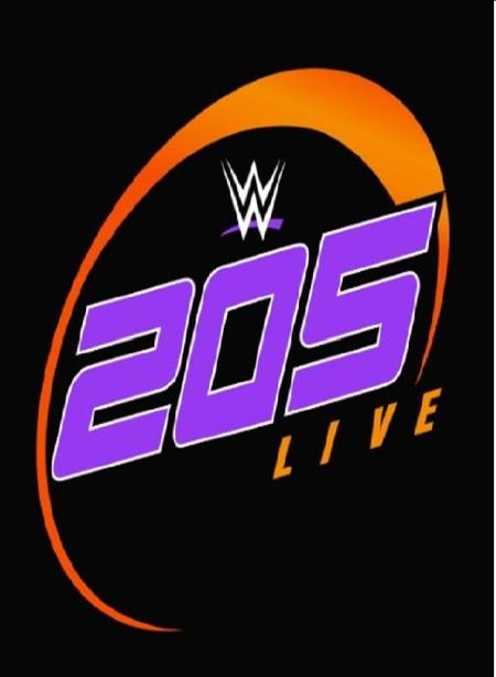 WWE 205 Live 2019 02 05 WEB h264-DEATHMATCH
