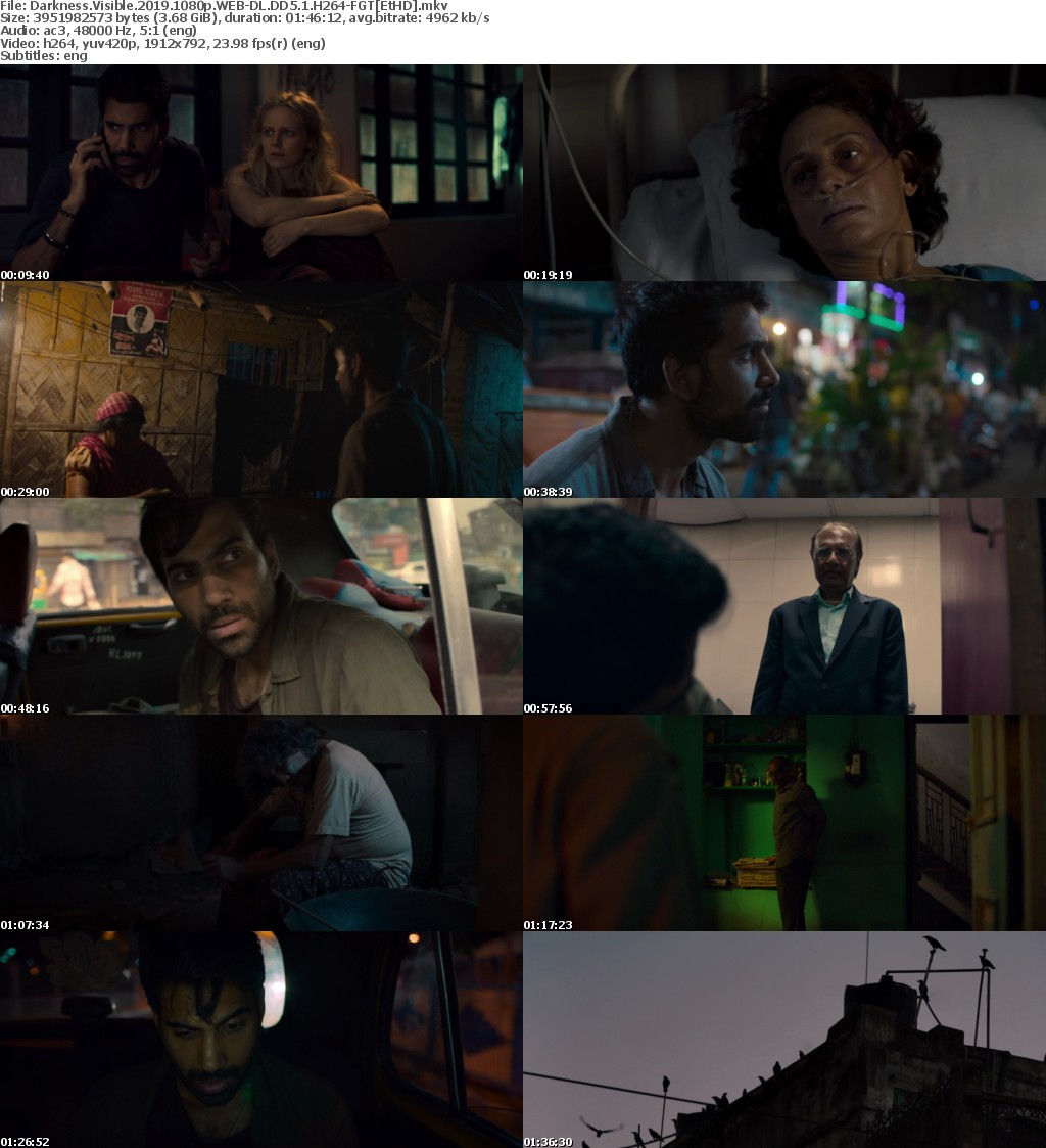Darkness Visible (2019) 1080p WEB-DL DD5.1 H264-FGTEtHD