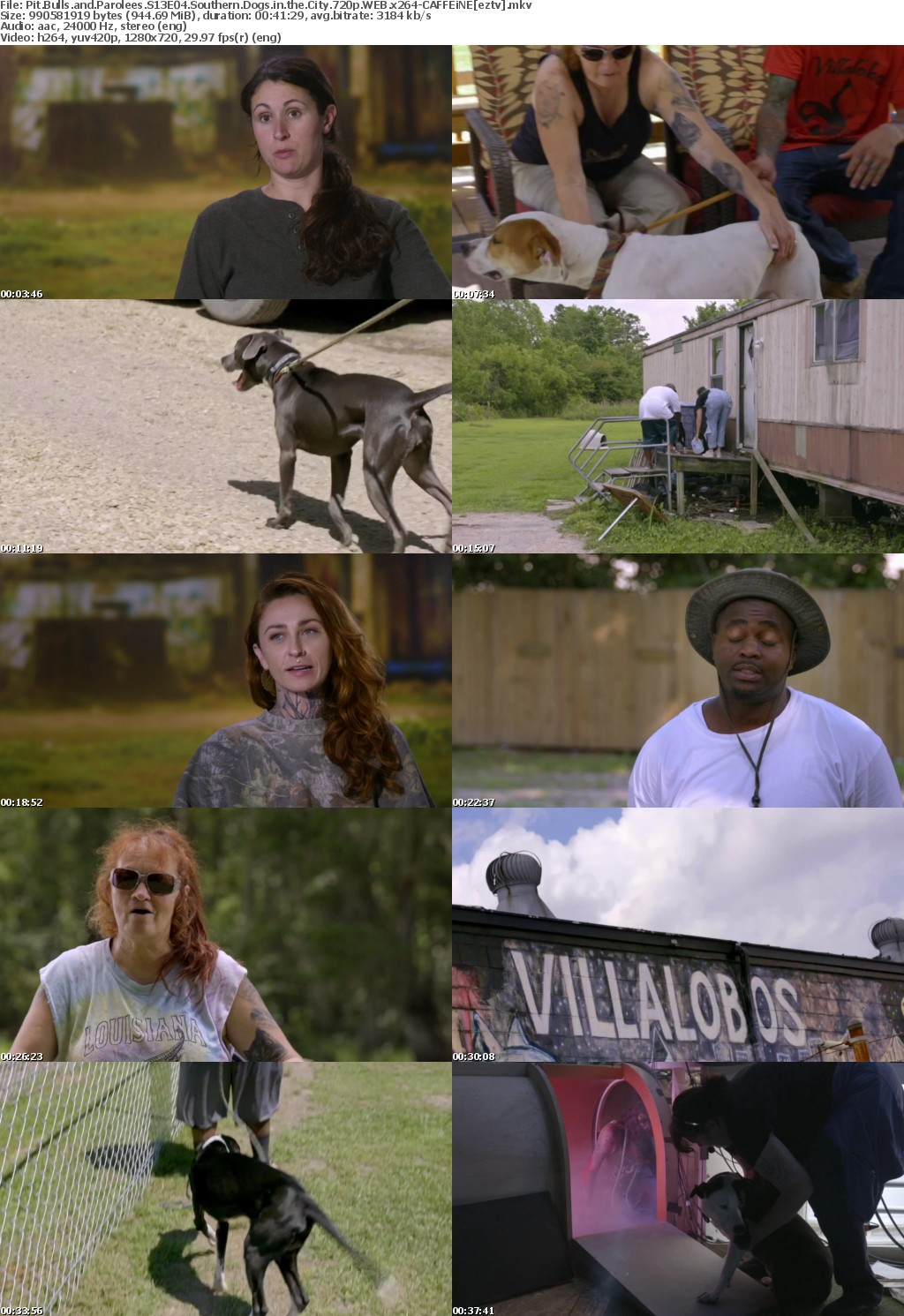 Pit Bulls and Parolees S13E04 Southern Dogs in the City 720p WEB x264-CAFFEiNE