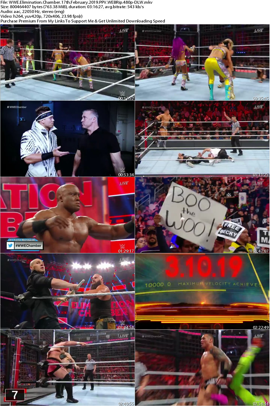 WWE Elimination Chamber 17th February 2019 PPV WEBRip 480p-DLW