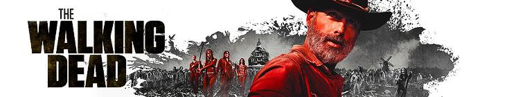 The Walking Dead S09E14 480p x264-mSD