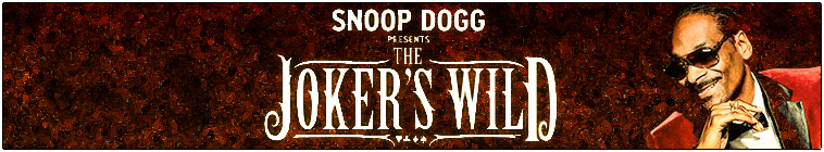 Snoop Dogg Presents The Jokers Wild S02E19 WEB x264-TBS