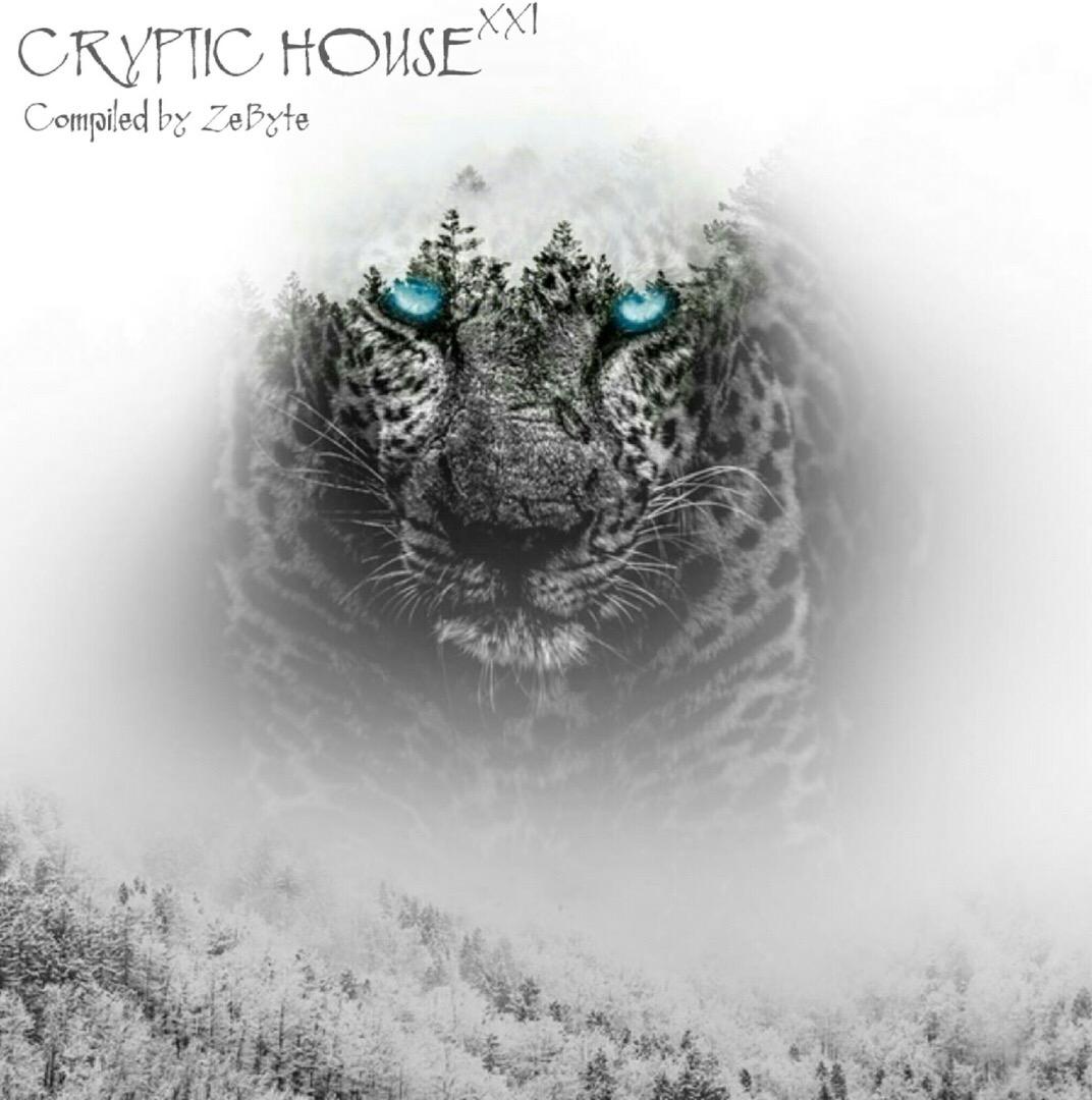 VA - Cryptic House XXI (2019)